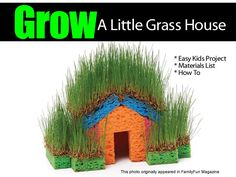 Here's an easy, fun project to get the kids involved and keep them busy during the summer or home during the holidays. Make a little grass house using sponges and grass seed. The folks at the spoonful.com blog show you what you need and how to make it. Click on the link below for the …