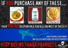 Se você consome sopa de barbatana de tubarão, cartilagem ou cálcio de tubarão e filé ou posta de cação, você está contribuindo para o extermínio destes animais....  Diga NÃO! Quando o consumo parar, eles param de matar!