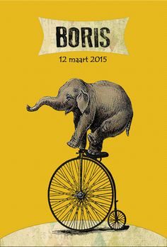 Geboortekaartje Boris - voorkant - Pimpelpluis - https://www.facebook.com/pages/Pimpelpluis/188675421305550?ref=hl (# olifant - olifantje - fiets - vintage - circus - cirkus - retro - geel - dieren - origineel)