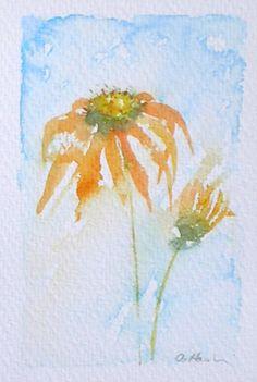 ECHINACEA 5 original small watercolour painting artist Amanda Hawkins 9 x 14cm decorative art floral cottage orange garden flowers
