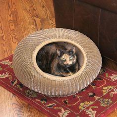 Decorative Cat Pod