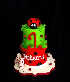 Last bird lady bug cake