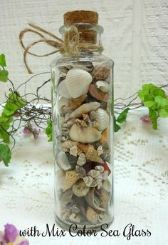 Bottle of little Oregon Coast Sea Shells and Beach Glass for your Coastal Charm decor! Choose bottle with color of glass you like best (if still available) of Green, Blue or a Mix glass colors with some aqua, red and peach color glass pieces. Bottles are 6 tall x 2 diameter Has a