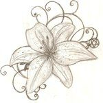 really want tiger lily tattoo. picked these flowers with my dad.
