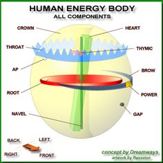 Components Of The Energy Body in 5. Energy Bodies, Chakras, Auras & The Flyers Forum Cool pic, cool site. www.theevolutionarymystic.com