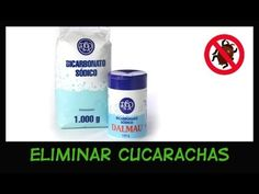 Eliminar Cucarachas con Bicarbonato: Recomendado Sin TOXICOS