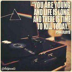 #fact Pink Floyd Lyrics, Facts, Music, Movies, Movie Posters, Life, Musica, Musik, Films