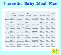 meal planners for infants meal planner 7 9 months recipes braun