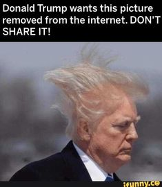 Picture memes 5 comments — iFunny Picture memes 5 comments — iFunny,elizabeths loom room Donald Trump wants this picture removed from the internet. DON'T SHARE IT! – popular memes on the site. Donald Trumph, Donald Trump Funny, Pictures Of Donald Trump, Donald Trump Tweets, Trump Picture, Def Not, Political Memes, I Love To Laugh, Funny Relatable Memes