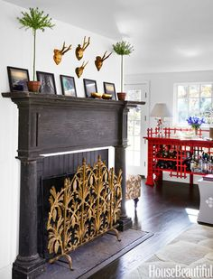 Fireplace screen, guest room.