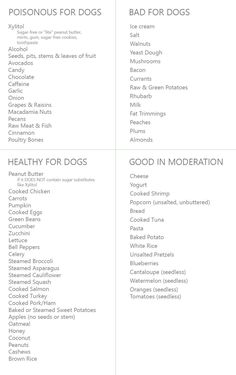Human Food For Dogs The Ultimate List What Is Good Your Dog A Can And Not Eat Foods That Are Poisonous Puppies