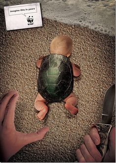 #WWF - Imagine this is yours.