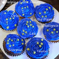 Girl Scout Daisy Space Science Explorer Snack Idea – Pieces by Polly: Easy Const… Pfadfinderin Daisy Space Science Explorer Snack-Idee – Stücke von Polly: Einfache Konstellation Cupcakes – Space Party Treats Space Party, Space Theme, Constellations, Space Cupcakes, Science Explorer, Science Party, Science Wedding, Science Fair, My Sun And Stars