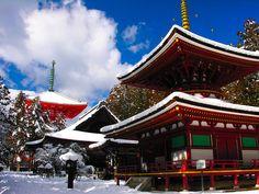 Japan. #asia #travel #destination #places