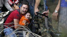 Vino y girasoles...: Ahora que no hay refugiados... ya podemos vivir tr...