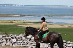 Time Travel, Us Travel, Riding Holiday, Horse Riding, Trekking, Coastal, Texas, Horses, City