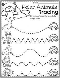Activities - Planning Playtime : Preschool Tracing Worksheets - Polar Animals ThemeArctic Animals Activities - Planning Playtime : Preschool Tracing Worksheets - Polar Animals Theme Educational Worksheets For 4 Year Olds Printable Tracing Worksheets, Preschool Worksheets, Preschool Activities, January Preschool Themes, Preschool Winter, Preschool Education, Bears Preschool, Polar Animals Preschool Crafts, Polo Sul