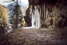 Ice stalactites by Filipe Coelho on YouPic F 1, In This Moment, Random, Nature, Plants, Pictures, Photography, Photos, Fotografie