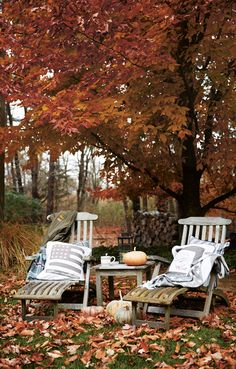 Beautiful fall days.  http://www.lexingtoncompany.com/