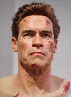 Grand Orient Wax Art is a famous celebrity wax museum in the world, focuses on the best celebrity wax figures and wax museum design and decoration Wax Statue, Wax Art, Wax Museum, Arnold Schwarzenegger, Famous Celebrities, Design Museum, Hollywood Stars, Miniatures, Tattoos