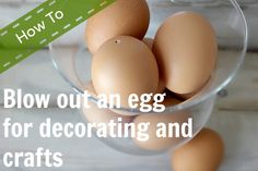 How to blow out and preserve eggs for decorating and crafts from The Creek Line House.