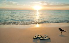 Flip flops and the Caribbean Sea