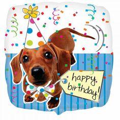 Dog Breeds Little .Dog Breeds Little Happy Birthday Puppy, Birthday Tree, Happy Birthday Images, Happy Birthday Greetings, Dog Birthday, Birthday Quotes, Birthday Wishes, Happy Birthday Foil Balloons, Dachshund