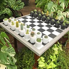 Succulents Garden, Garden Plants, Planting Flowers, Indoor Garden, Indoor Plants, Dream Garden, Home And Garden, Pot Jardin, Plant Decor