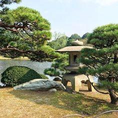 Shinjuku Gyoen National Garden #japan #shinjuku #japanesegarden #stone #lantern #yukimi_dorou #ishidorou #niwaki