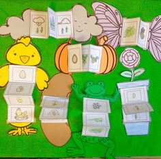 Life Cycle sequencing card crafts by Robin Sellers