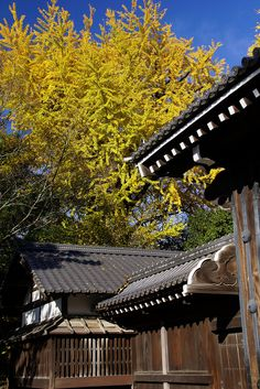 The Kyoto Imperial Palace  is the former ruling palace of the Emperor of Japan.