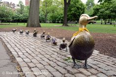 """The Boston Public Garden's """"Make Way for Ducklings"""" statues were decked out in Bruins jerseys during the 2011 playoffs. (c) Lisa Linard Photography."""