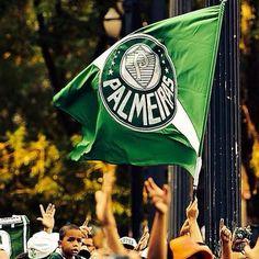 Campeão 2016 - Palmeiras