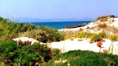 PORTUGAL - Comporta. Strandhopping im Alentejo: Praia do Carvalhal