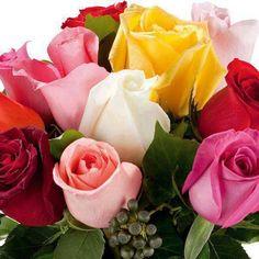 Imágenes de Flores Bonitas - Vol.7 (20 Fotos)
