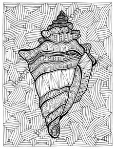Zentangle Shell Adult Coloring Page Sheet Colouring Book Printable Digital