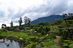 With off-roading, chances to get to know the locals, tasty food and incredible landscapes, there are some amazing things to do in Bandung, Indonesia. Bali, Stuff To Do, Things To Do, Train Rides, Plan Your Trip, Jakarta, The Locals, Wordpress, Wildlife