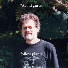 Psychedelic Quotes, Psychedelic Drugs, Woodstock Hippies, Stupid Pictures, Terence Mckenna, Into The Woods Quotes, Love Is An Action, Plants Quotes, Quirky Quotes