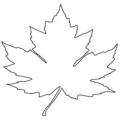 Maple Leaf Coloring Page Our Collecting With