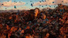 Bilbon Sacquet (Martin Freeman) aux anges dans <i>Le Hobbit, La Désolation de Smaug</i>.