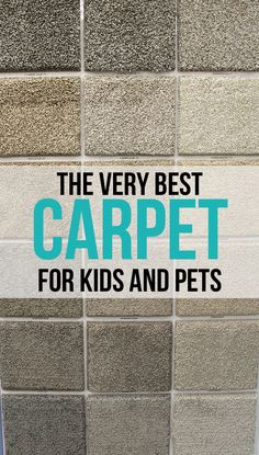 The Very Best Carpet for Kids and Pets - The Craft Patch Waterproof, durable, beautiful carpet, The very best carpet for kids and pets Decking of the house is the single most re.
