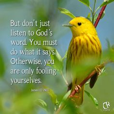 But don't just listen to God's word. You must do what it says. Otherwise, you are only fooling yourselves. - James 1:22 NLT Bible verse | CrossRiverMedia.com