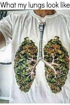 What My Lungs Look Like From RedEyesOnline.net