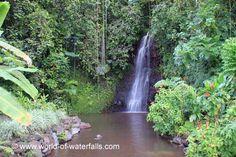 Vaipahi Falls (Papeari District / near Taravao, Tahiti, French Polynesia) Tahiti Nui, Public Garden, French Polynesia, South Pacific, Waterfalls, World, Beach, Outdoor, Life