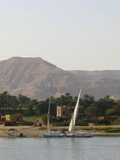Flora y fauna del Nilo - http://www.absolutviajes.com/flora-y-fauna-del-nilo/