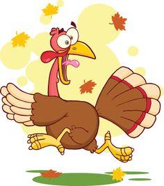 Turkey Bird Cartoon Character on Behance - Thanks for watching!