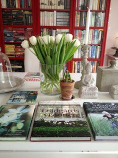 Rimfrost och trädgårdsdrömmar.....