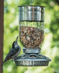 Mason jars can be used for much more than just canning! Feed the birds in your yard with this adorable rustic bird feeder from Mason Jar Nation.