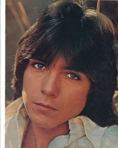 pictures of david cassidy | DAVID CASSIDY pinup – PLEASE PLEASE ME I WRITE THE SONGS