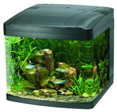28 Modern Fish Tanks That Inspire Relaxation Fish Tanks